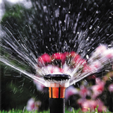 pop up sprinkler